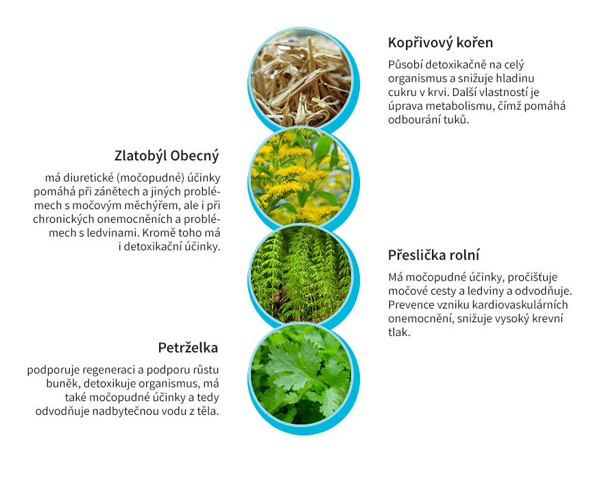 Byliny na detoxikaci čištění ledvin čaj flow