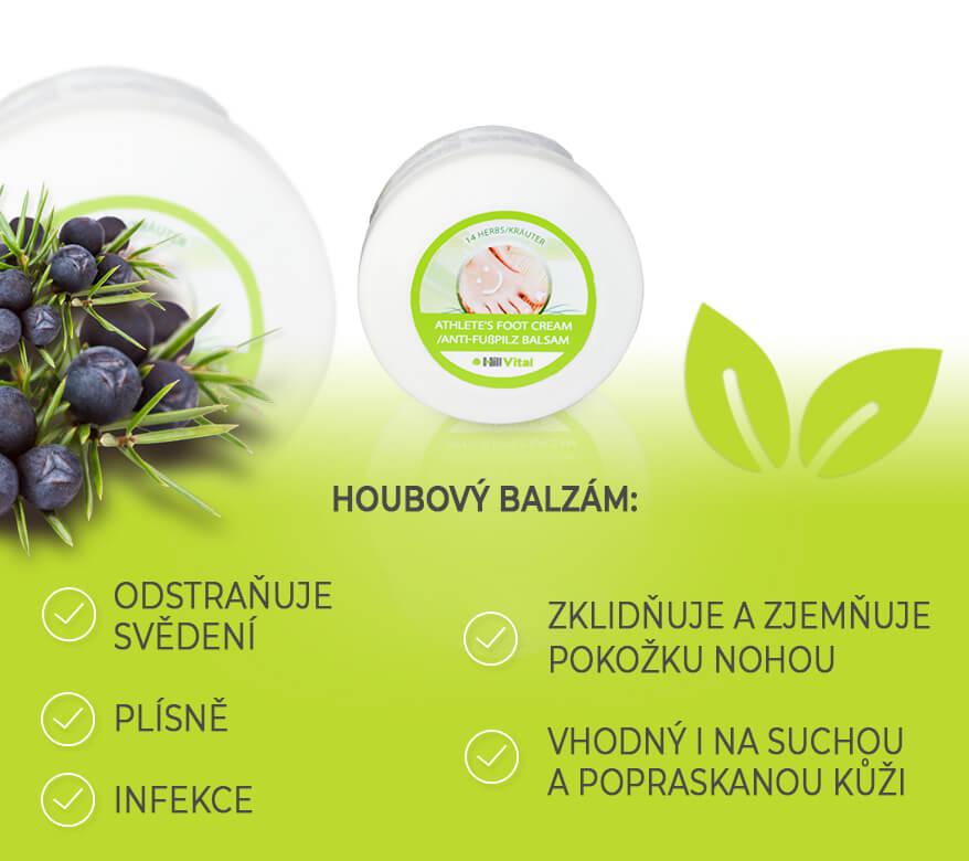 houbovy-balzam-hillvital-text-mykoza